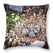 Killdeer Nest Throw Pillow
