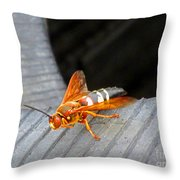 Killer 2 Throw Pillow
