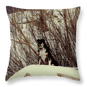 Kilo Throw Pillow