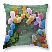 Kimchi Bacteria, Sem Throw Pillow