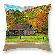 Kindred Barns Painted Throw Pillow by Steve Harrington