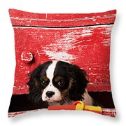 King Charles Cavalier Puppy  Throw Pillow by Garry Gay