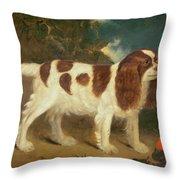 King Charles Spaniel Throw Pillow