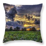 King Cotton Sunset Art Statesboro Georgia Throw Pillow