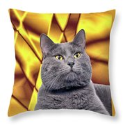King Kitty With Golden Eyes Throw Pillow