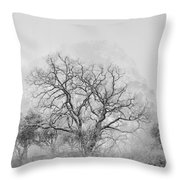 King Mountain Monochrome Throw Pillow