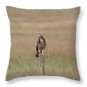 King Of His Domain. Throw Pillow