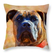 King Of My Home Throw Pillow
