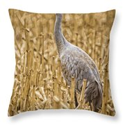 King Of The Delta Cornfield Throw Pillow