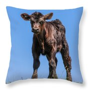 King Of The Hill Throw Pillow