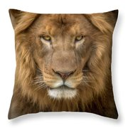 King Of The Jungle Throw Pillow