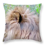 King Of The Jungle Profile  Throw Pillow