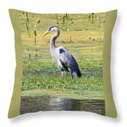 King Of The Marsh Throw Pillow