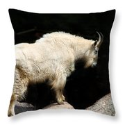 King Of The Mountain Throw Pillow