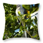 King Of The Song Throw Pillow