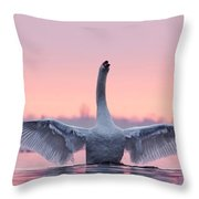 King Of The Water And The Sunset  Throw Pillow