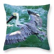 King Pelican Throw Pillow