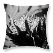 King Protea Exotic Tropical Flowers Throw Pillow