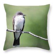 Kingbird Throw Pillow