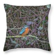 Kingfisher. Throw Pillow