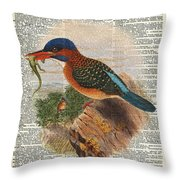 Kingfisher Bird With A Lizard Illustration Over A Old Dictionary Throw Pillow