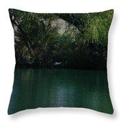 Kingfisher In Flight Throw Pillow