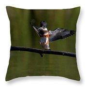 Kingfisher Landing Throw Pillow