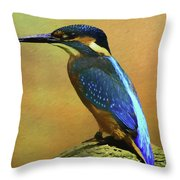 Kingfisher Perch Throw Pillow