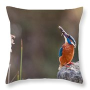 Kingfisher With Fish Throw Pillow