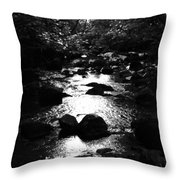 Kintyre Plus Seventeen Throw Pillow