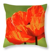 Kiss The Sun Throw Pillow