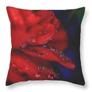 Kisses In The Rain Throw Pillow