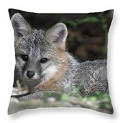 Kit Fox1 Throw Pillow