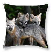 Kit Fox10 Throw Pillow