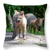 Kit Fox12 Throw Pillow