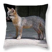 Kit Fox14 Throw Pillow