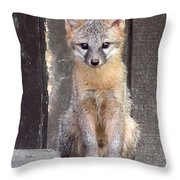 Kit Fox15 Throw Pillow