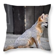 Kit Fox2 Throw Pillow