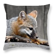 Kit Fox3 Throw Pillow