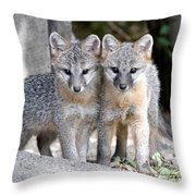 Kit Fox6 Throw Pillow