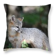 Kit Fox7 Throw Pillow