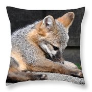 Kit Fox8 Throw Pillow