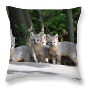 Kit Fox9 Throw Pillow