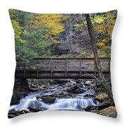 Kitchen Creek Bridge Throw Pillow