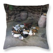 Kitchen Livestock 2 Throw Pillow