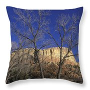 Kitchen Mesa And Bare Cottonwood Trees Throw Pillow