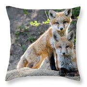 Kits At Rest Throw Pillow