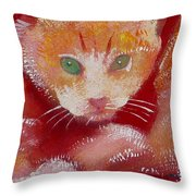 Kitten Throw Pillow