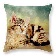 Kitten - Painting Throw Pillow