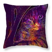 Kitten Red Cat Cat Tom Cat Pets  Throw Pillow